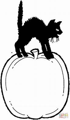Malvorlage Katze Mit Buckel Ausmalbild Schwarze Katze Steht Auf Einem K 252 Rbis