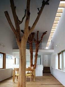 arbre interieur deco un tronc d arbre en d 233 co int 233 rieur