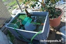 vasche x tartarughe d acqua pin discussione fai da te riparazione cerchi in lega on