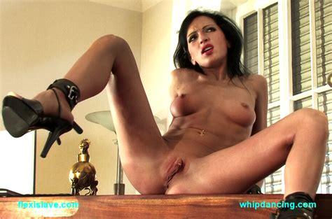 Alisha Porn Star
