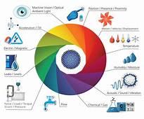 IoT Sensors & Actuators  2017 List Of Sensor And Actuator