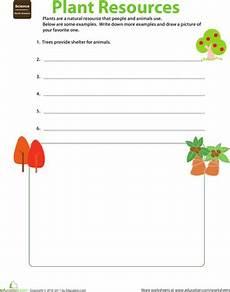 natural resources plants worksheet education com