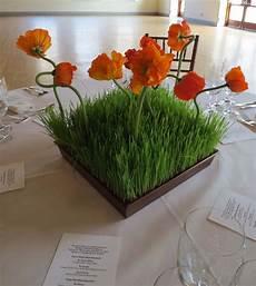 1000 images about wedding greenery wheatgrass