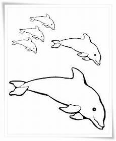 Malvorlage Delphine Kostenlos Ausmalbilder Zum Ausdrucken Ausmalbilder Delfine Kostenlos