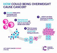 the second preventable cause of cancer being overweight cancer research uk science blog