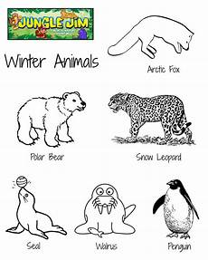 winter animals coloring pages for preschool 17197 winter animal free printable coloring page with lots of winter animals jung
