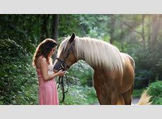Levensecht speelgoed voor de echte paardenliefhebber