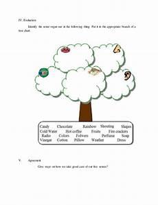 worksheets in science grade 3 sense organs 12530 lesson plan detailed