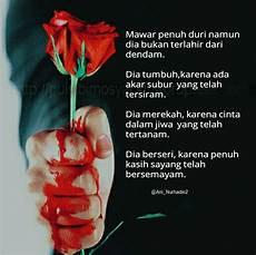 Gambar Bunga Mawar Berdarah Pickini