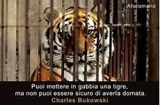 animali in gabbia puoi mettere in gabbia una tigre ma non puoi essere