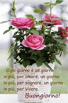 frasi i fiori buongiorno un fiore per te mariella forever