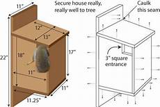 squirrel houses plans guide wood music box plans the bench squirrel home