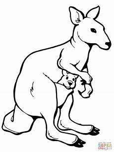 grab your new coloring pages kangaroo http