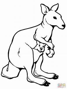 Bilder Zum Ausmalen Tiere Kostenlos Kaengurus Ausmalbilder Ausmalbilder Kaengurus Mit