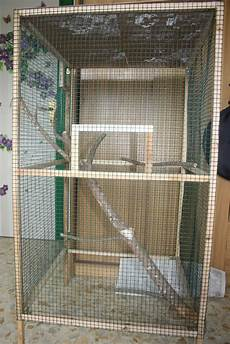 costruire gabbia per uccelli mignololab