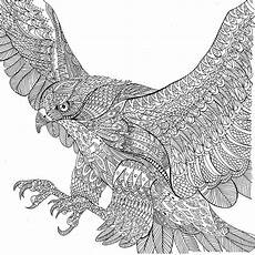 Ausmalbilder Tiere Erwachsene Image Result For The Menagerie Colouring Book