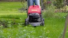 Rasen Mähen Vor Dem Winter - der garten im oktober tipps tricks vom g 228 rtner
