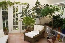 Sunrooms Beautiful Green Winter Gardens Lush Houseplants Winter Decorating Ideas