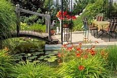 teichpflanzen richtig pflanzen pflanzenpflege im teich