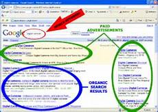 pay per click bid management bid management services in india
