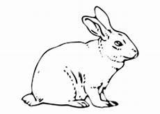 Ausmalbild Hase Sitzend Ausmalbilder Ostern Osterhase Ostereier Kinder Malvorlagen