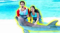 bagno in piscina in facciamo il bagno in piscina con i delfini