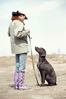 comment analyser efficacement le caract 232 re de chien