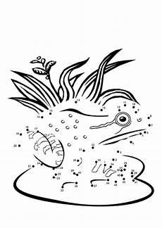 Malvorlage Frosch Gratis Malvorlage Frosch Kostenlose Ausmalbilder Zum Ausdrucken