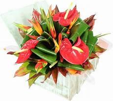 bouquet de fleurs exotiques la fontaine fleurie offrir bouquet fleurs exotique bequia