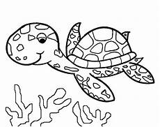 Turtle Coloring Sheet Turtles To Print For Free Turtles Coloring Pages