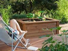 inspirations un bassin pour mon jardin