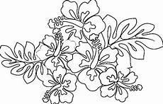 hawaiian flower coloring pages printable at getcolorings