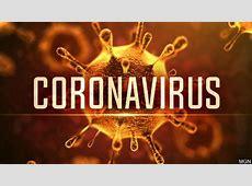 virus international