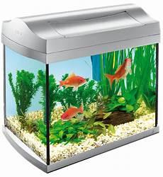 tetra aqua discovery line aquarium 20l kopen frank