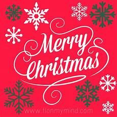 merry christmas florida my mind