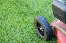 Alten Rasen Erneuern Mit Und Ohne Umgraben Anleitung
