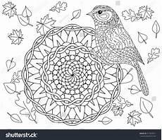 coloring page autumn bird mandala vector 417825871