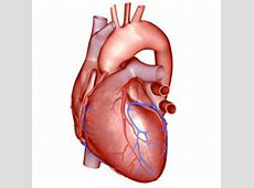pneumonia congestive heart failure prognosis