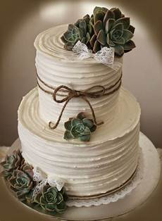 delana s cakes rustic wedding cake with succulents