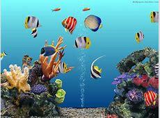 [50 ] 3D Aquarium Wallpaper on WallpaperSafari