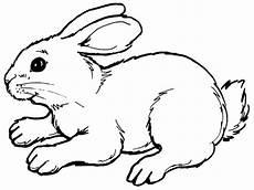 Hase Malvorlage Einfach Malvorlage Hase Einfach Ausmalbilder Fur Euch