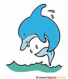 delfin clipart bild grafik kostenlos