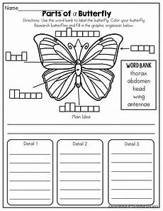 grade 3 science worksheets insects 12532 march filled learning second grade science third grade science butterfly science
