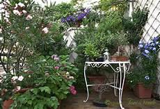 terrazzo in fiore quattro toni di verde un terrazzo fa