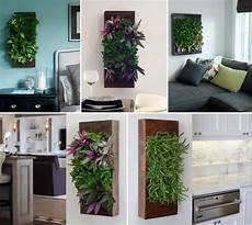To Make Vertical Garden Indoor Living Wall by Living Walls For Inside The Home And In The Backyard Patio