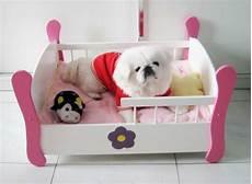 lit pour petit chien le lit pour chien n 233 cessaire et amusant
