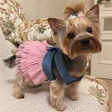 puppy clothes for small dogs bins summer dress pet clothes for small wedding
