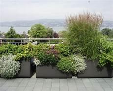 Sichtschutz Terrasse Pflanzkübel - gro 223 e pflanzk 252 bel effektvoll im garten in szene setzen