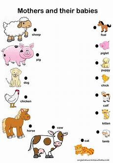 mother and their babies worksheet