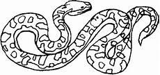 Ausmalbilder Reptilien Malvorlagen Top 20 Schlangen Ausmalbilder Beste Wohnkultur